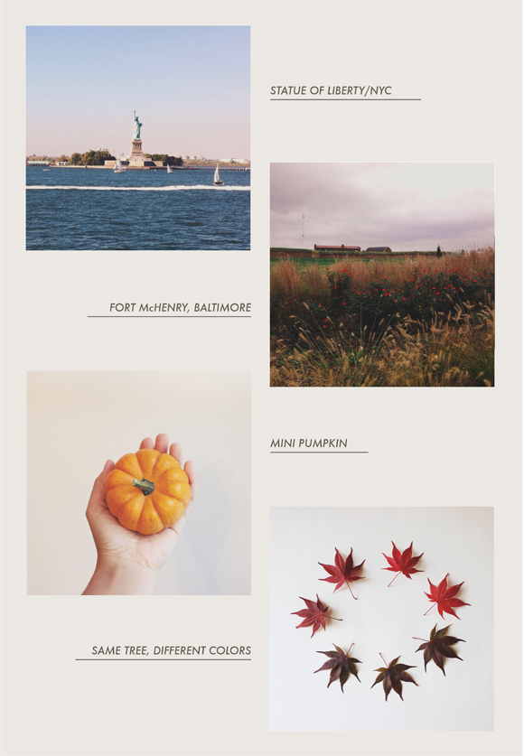 Lately on my Instagram: October