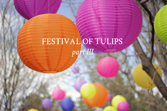 Festival of Tulips / Part 3